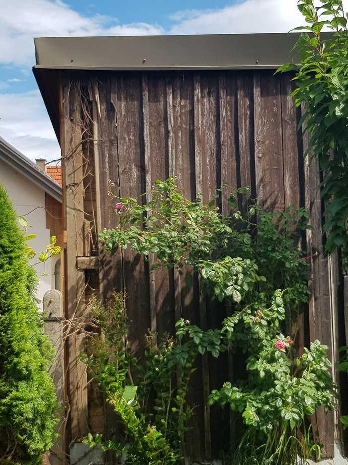 Gartenhaus Erneuerung mit Stulpschalung aus Burger Lärchenbretter