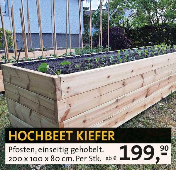 Hochbeet Kiefer